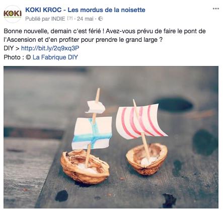 lareinedesamismots-facebook-noisettes-koki-3