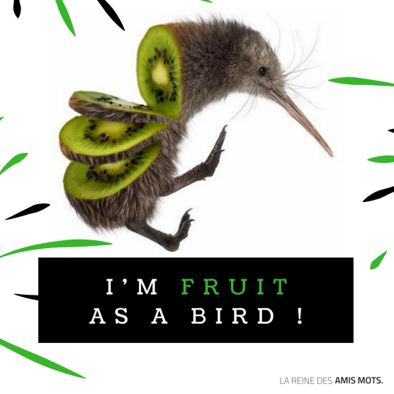 lareinedesamismots-fruit-as-a-bird.jpg